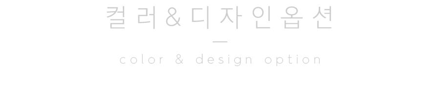 04-1_option_title.jpg