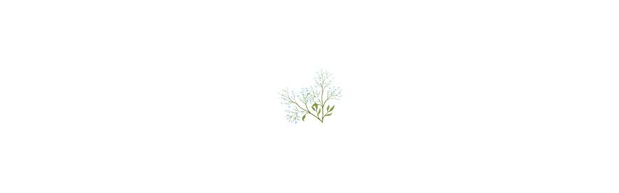 02-10_blank.jpg