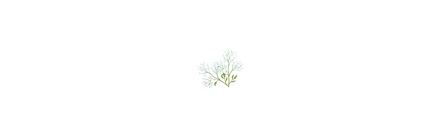 02-7_blank.jpg